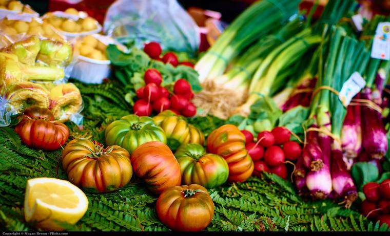 13 ricette per il menu della dieta chetogenica