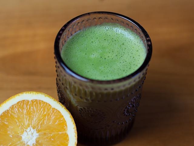 Dieta liquida proteica