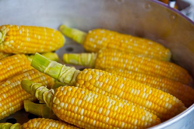 Mangiare Popcorn fa male E se ti dicessi che ti fa dimagrire: che cos'è il popcorn