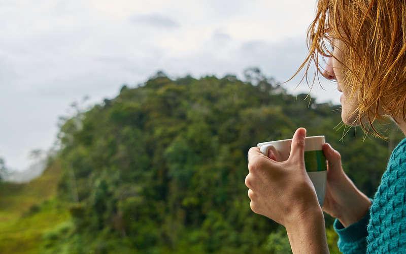 Il segreto del successo di Fizzy Slim: Garcinia Cambogia, Zenzero e Bacche di Goji