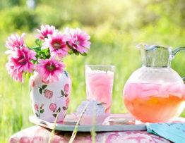Estrattori di succo: lo strumento migliore per la migliore spremitura